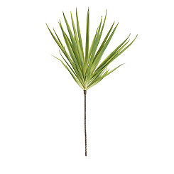 Palm Branches, Set of 6