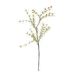 Cherry Blossom Branches, Set of 6