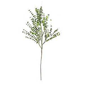 Eucalyptus Branches, Set of 6