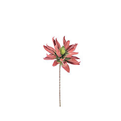 Maroon Flower Stems, Set of 6