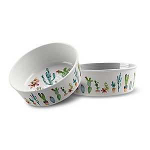 Medium Cactus Melamine Pet Bowl