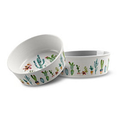 Medium Cactus Melamine Pet Bowl