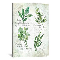 Fresh Herbs Canvas Art Print