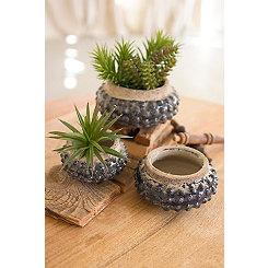 Dark Blue Knobby Ceramic Planters, Set of 3