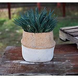 White Cement and Natural Basket Planter