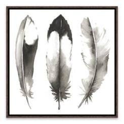 Watercolor Feathers II Framed Art Print