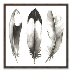 Watercolor Feathers II Framed Art Print