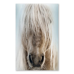 Palomino Acrylic Portrait Glass Art Print