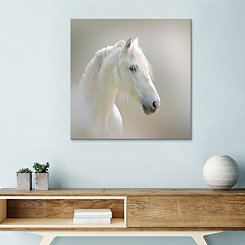 Lusitano Horse Embellished Canvas Art Print