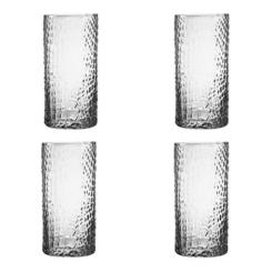 Clear Crocodile Highball Glasses, Set of 4