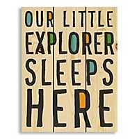 Little Explorer Wood Pallet Art Print