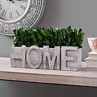 Green Boxwood Home Arrangement