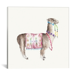 Colorful Peruvian Alpaca Canvas Art Print