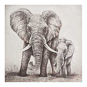 Elephant Pair Canvas Art Print