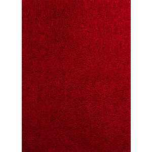 Carmire Red Columbia Shag Area Rug, 5x7