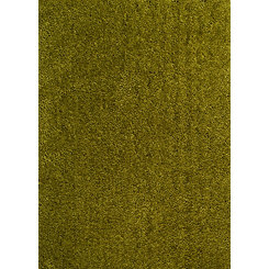 Samovar Green Columbia Shag Area Rug, 5x7
