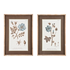 Conversation of Botany Framed Art Prints, Set of 2