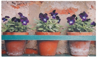 Potting Table Print Recycled Rubber Doormat