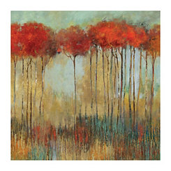 In the Middle of a Forest Canvas Art Print