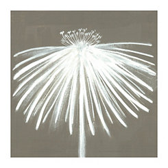 Coneflower Silhouette Canvas Art Print