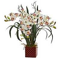 Cymbidium Orchid Arrangement in Red Vase