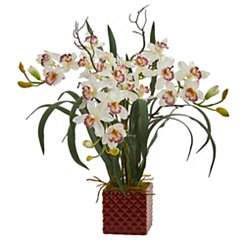 Cymbidium Orchid Arrangement in Red Vase