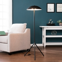 Shallow Dish Shade Matte Black Floor Lamp