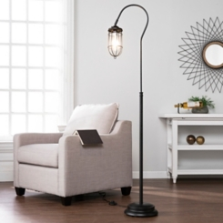 Matte Black Crook Neck with Edison Bulb Floor Lamp