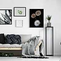 Dandelion Metamorphose Canvas Art Print