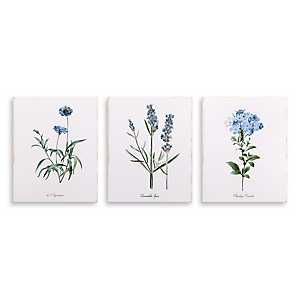 Lavender Botanical Canvas Art Prints, Set of 3