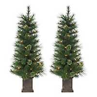 Pre-Lit Cashmere Pine Potted Trees, Set of 2