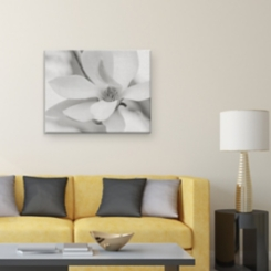 Shuttertree Magnolia Canvas Art Print