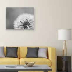 Shuttertree Dandelion Canvas Art Print