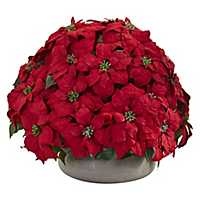 Red Christmas Poinsettia in Stone Planter, 28 in.