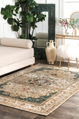 Traditional Kristie Medallion Area Rug, 5x8