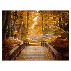 Forest Escape Giclee Canvas Art Print