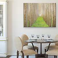 Poplar Grove I Canvas Art Print