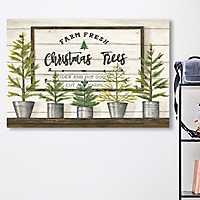 Farm Fresh Potted Christmas Trees Canvas Art Print