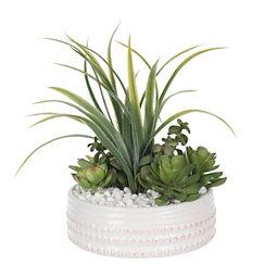 Succulent and Grass Arrangement in White Dot Pot