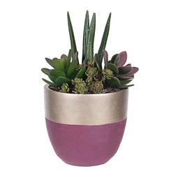 Purple and Gold Succulent Arrangement