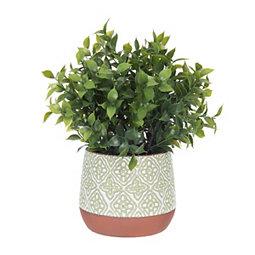 Green Moroccan Pot Tea Olive Tree Arrangement