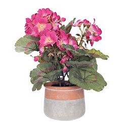 Pink Geranium Arrangement