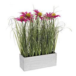 Pink Daisy and Grass Ledge Arrangement