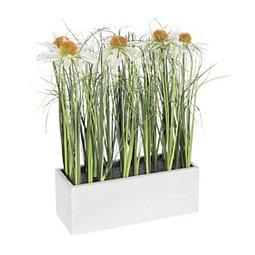 Daisy and Grass White Ledge Arrangement