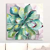 Watercolor Succulent I Giclee Canvas Art Print