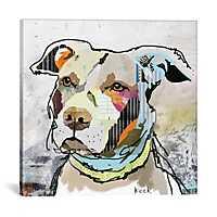 Pit Bull Canvas Art Print by Kroto Arts