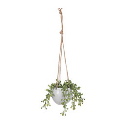 Succulent Grass Hanging Arrangement