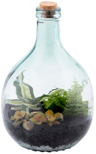 Green Glass Terrarium Bottle With Tools 13 In Kirklands