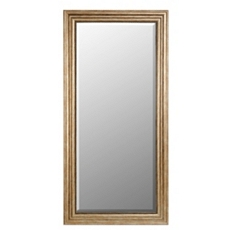 Champagne Full Length Mirror, 32x66 at Kirkland's