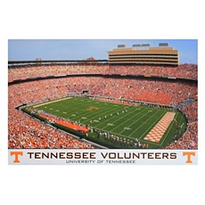 Tennessee Stadium Canvas Art Print at Kirkland's
